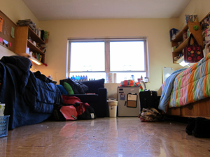 Winter break checklist lengthens this year: bed bugs prompt extra precautions for students