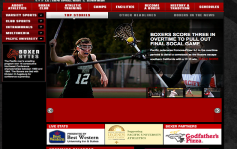 Goboxers website gets revamped
