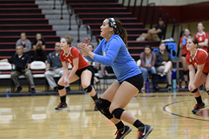 Volleyball ready for conference play